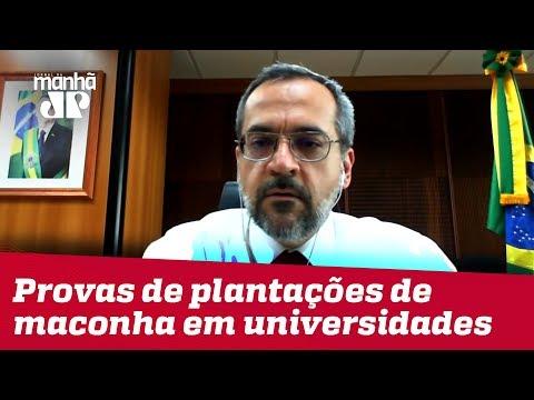 Weintraub: há provas de plantações de maconha em universidades
