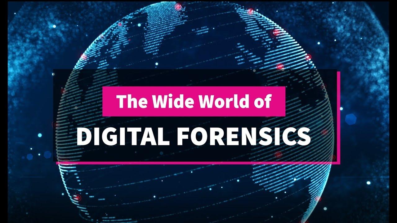 Wide World of Digital Forensics