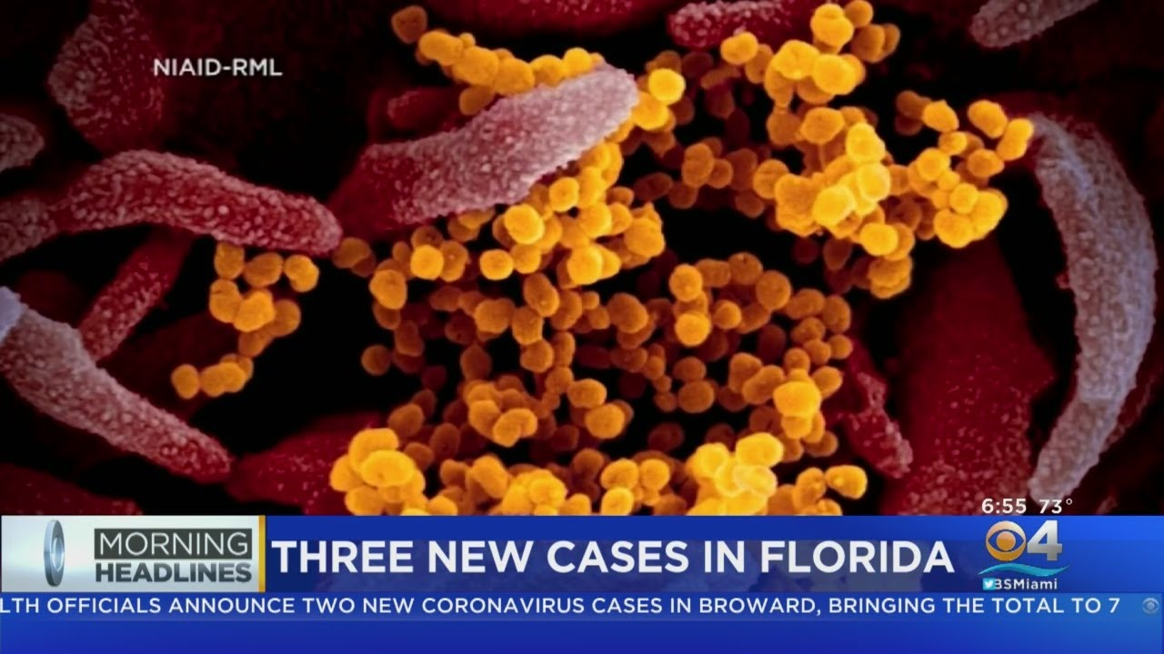 Coronavirus Update: Three New Positive Cases In Florida, Two In ...