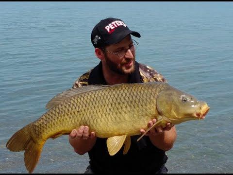 Lake Ontario Carp Wild carp club event 2