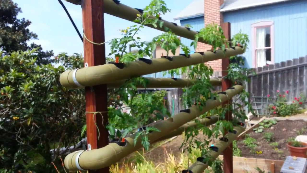 Vertical hydroponic restaurant gardens in La Jolla YouTube – Vertical Hydroponic Garden Plans
