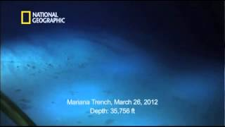 Video Camerons View of the Mariana Trench