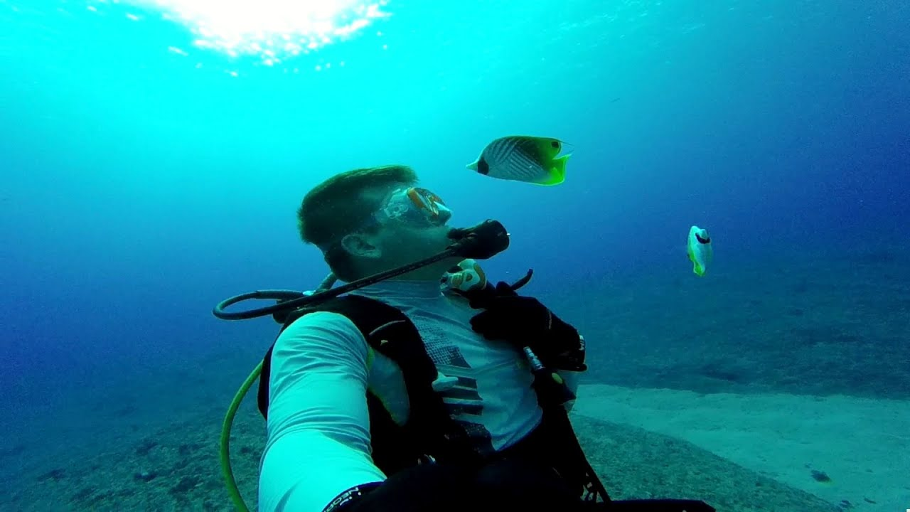 how to get into scuba diving