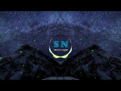 Marshmello ft Martin Garrix -: DUCK//SPECTRUM NATION