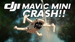 DJI MAVIC MINI CRASH !!