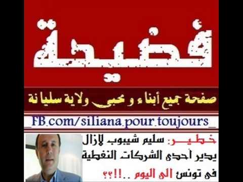 فضيحة و خطير: سليم شيبوب لازال يدير إحدى الشركات النفطية في تونس إلى اليوم !؟