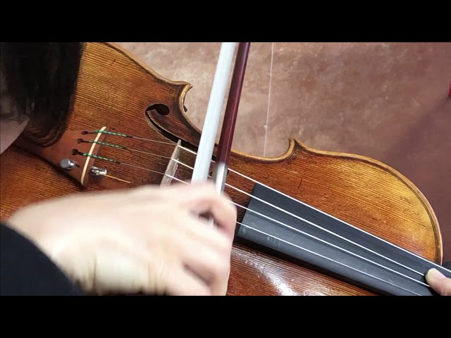 Ifstrings Master build deluxe wood #342 Antonio Stradivarius 1716