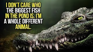 BIGGEST FISH IN THE POND - New Motivational Video Compilation