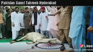 Pakistan Kashmir jan