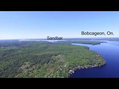 Waterfront For Sale | Pigeon Lake | Trent Lakes | Buckhorn | Ontario