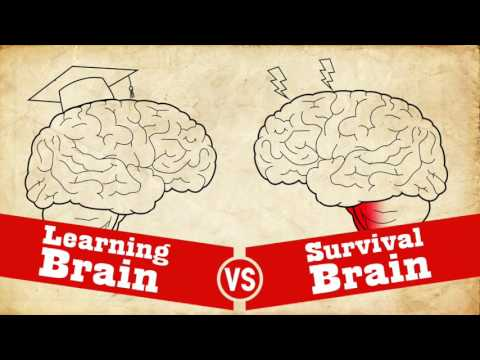 Video On Impacts Of Trauma On Learning >> Understanding Trauma Learning Brain Vs Survival Brain Youtube