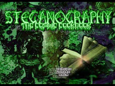 01 -- Steganography -- Osmosis 150BPM Darkpsy Forest Psychedelic