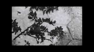 Nina Zilli - Come il Sole