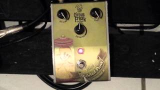 Circus Freak Pickled Punk guitar distortion demo