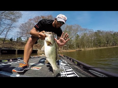 Lake Hartwell | Day 1 Highlights