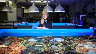 Academy Breakfast Club, Ep. 9: Dr. Rebecca Albright on Corals