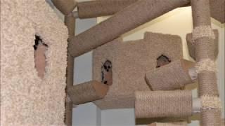 Лазалки, игровые комплексы, домики, лабиринты и городки для кошек и их когтей