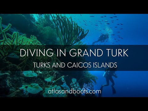 Diving in Grand Turk, Turks and Caicos Islands