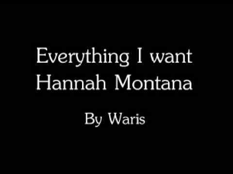 Hannah Montana The Movie - Everything i want *Lyrics ...