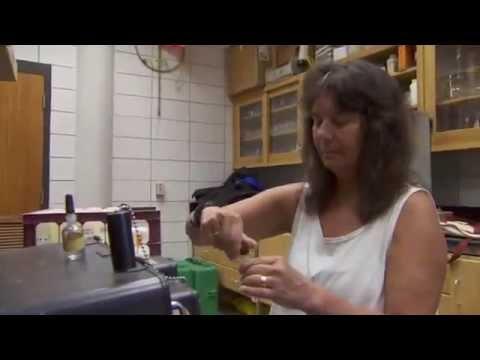 Marine Ecologist Nancy Rabalais: 2012 MacArthur Fellow