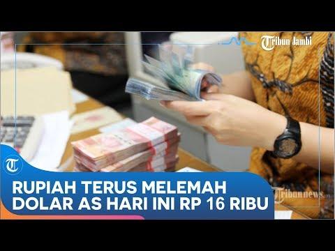 Dampak Corona, Nilai Tukar Rupiah Terhadap Dolar AS Hari Ini Rp 16 Ribu - 동영상