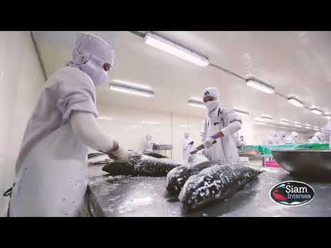 บริษัท สยามอินเตอร์ซี จำกัด   ผู้ผลิตจำหน่ายอาหารทะเลแช่แข็ง