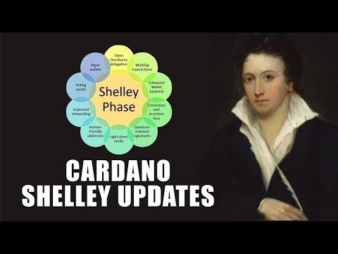 Shelley (Decentralise) | Cardano Price Prediction & Future | Detailed Explanation | Hindi