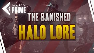 The Banished Faction - Halo Lore (Halo Wars)