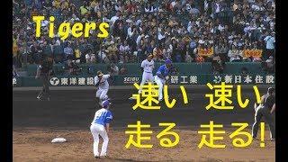 阪神  近本 光司『速い 速い! 走る 走る! 盗塁数9個目10個目』 vs 横浜DeNA 2019年5月4日甲子園球場