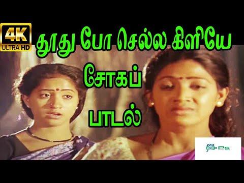 Thoothu Po Chella Kiliye ||தூது போ செல்ல கிளியே || SLove Sad H D Song
