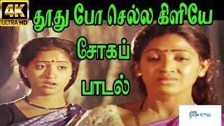 Thoothu Po Chella Kiliye ||தூது போ செல்ல கிளியே || S.Janaki  Love Sad H D Song