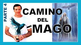 Fase 4 de 4: CAMINO DEL MAGO/CÓNDOR | José Luis Parise