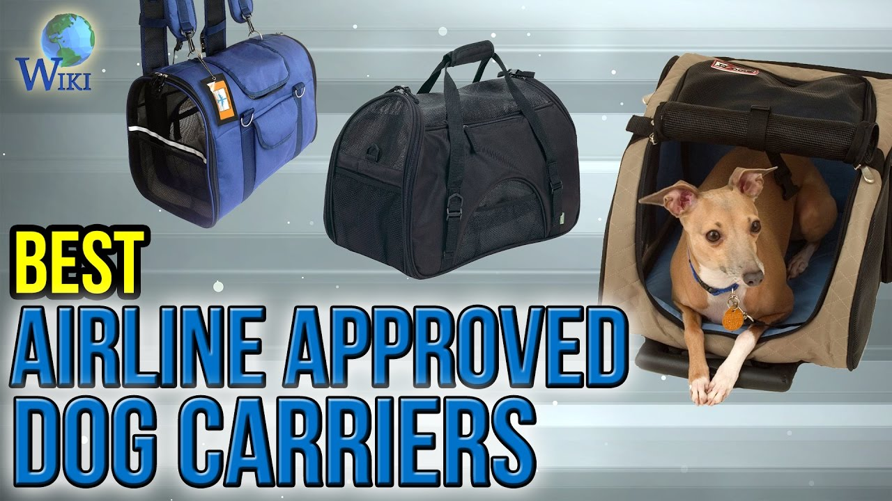 10 Best Airline Approved Dog Carriers 2017 Youtube