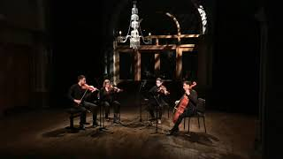 Quatuor Cobalt - Fanny Mendelssohn : Quatuor en mib - 1. Adagio ma non troppo