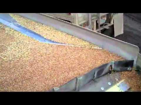 Wheat Gravity Table.flv