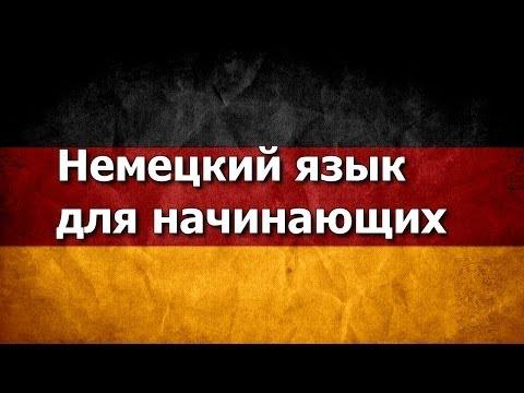 Полиглот 16 с Петровым. Английский, немецкий с нуля за 16