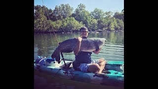 MONSTER 50 lb Kayak Catfish from Potomac River!!