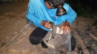 ใส่เบ็ดปลาช่อน ในหนองตามท้องทุ่งนา (สูตรนี้เด็ด). ใส่เบ็ดในช่วงหัวค่ำ
