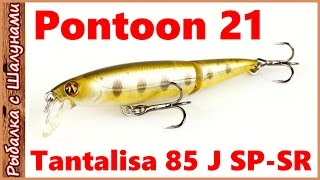 Tantalisa 85 J SP-SR. Pontoon 21 - обзор воблера