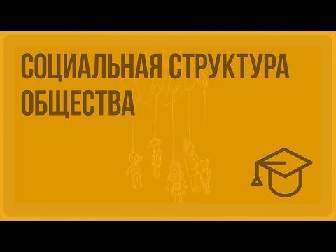 Социальная структура общества. Видеоурок по обществознанию 8 класс