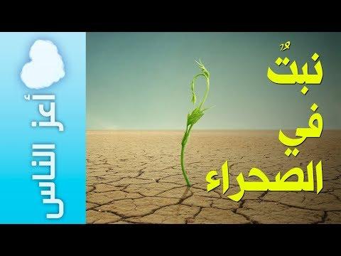 {أعز الناس} (05) نبتٌ في الصحراء