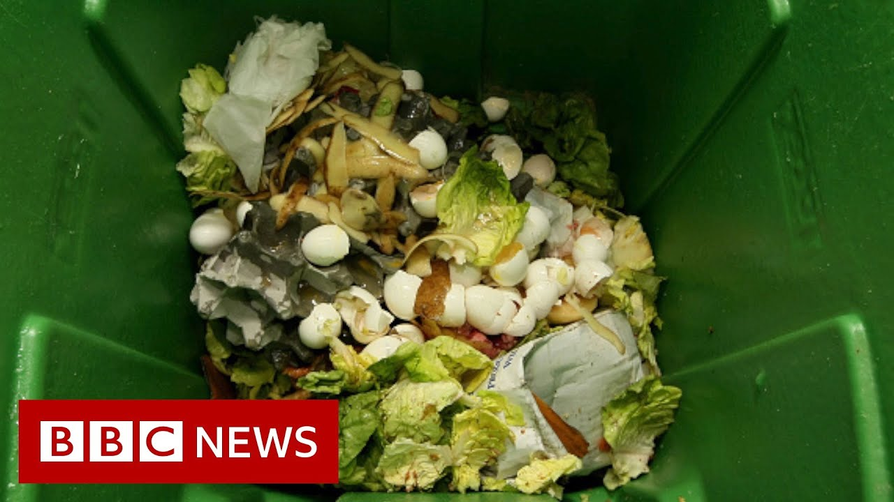 How can how we solve the planet's food waste problem? - BBC News
