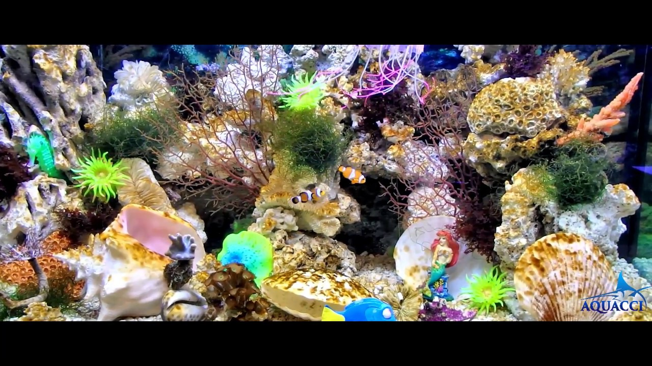 Artificial coral reef decoration in saltwater aquarium by for Artificial coral reef aquarium decoration uk