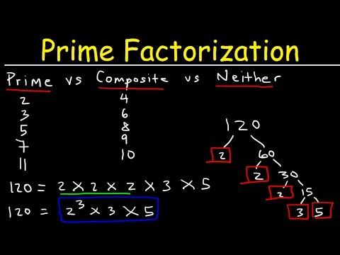 Prime Factorization Explained!