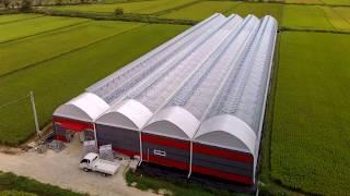 어마토 농장 온실 공사