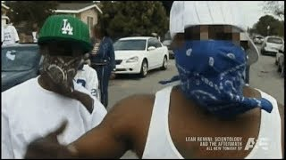 Gangland: St. louis Crips BOD (Boys of Destruction) HD S4E7