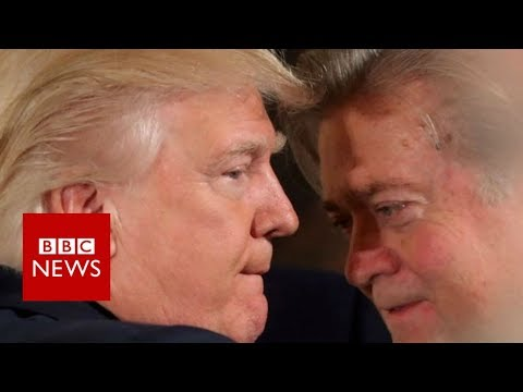 Steve Bannon vows to 'go to war' for Trump agenda after sacking - BBC News