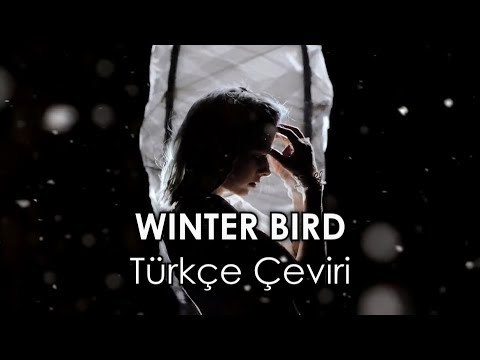 AURORA - Winter Bird (Türkçe Çeviri)