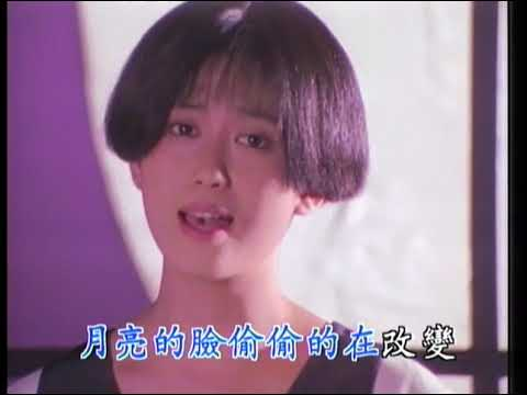 孟庭苇 - 你看你看月亮的脸 (1991 原版) / Ting-Wei Meng - Look, the Face of the Moon (1991 Originial)