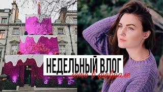 25-ти МЕТРОВЫЙ ТОРТ и ФЕСТИВАЛЬ ОРХИДЕЙ